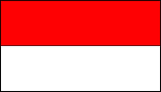 Begini Cara Membuat Bendera Indonesia Di Profil FF, Auto Work